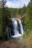 CA-McArthur Burney Falls State Park Royalty Free Stock Images