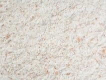 Cała pszeniczna mąka Fotografia Royalty Free