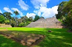 Caana, o palazzo alle rovine di Caracol, Belize del cielo immagini stock libere da diritti