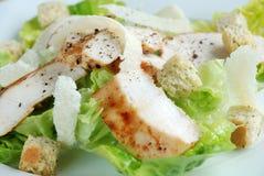 caasar σαλάτα κοτόπουλου Στοκ Εικόνα