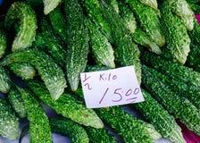 Cabaça amarga verde fresca ou erva amarga do melão Foto de Stock