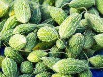 Cabaça amarga verde fresca tradicional ou erva amarga do melão no mercado Alimento vegetal saudável Fotos de Stock Royalty Free