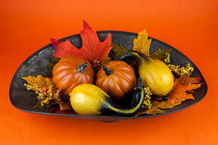 Cabaças & Autumn Leaves Imagem de Stock