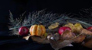 Cabaças e maçãs da queda Foto de Stock Royalty Free
