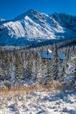 Cabaña de la montaña en un día de invierno nevoso Imagen de archivo libre de regalías