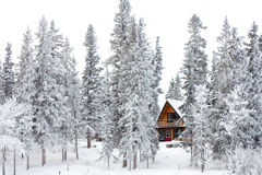 Cabaña de la Navidad en el país de las maravillas del invierno Fotos de archivo