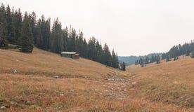 Cabaña de madera abandonada en Rocky Mountains central de Montana los E.E.U.U. Imágenes de archivo libres de regalías