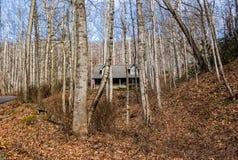 Cabaña de madera en la Carolina del Norte Fotos de archivo