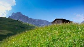 Cabaña de madera en un prado verde enorme del verano con un paisaje magnífico de la montaña detrás Foto de archivo libre de regalías