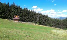 Cabaña de madera y naturaleza Foto de archivo