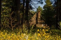 Cabaña de piedra en el bosque Fotografía de archivo