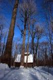 Cabaña del azúcar en invierno imágenes de archivo libres de regalías