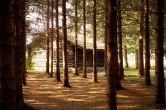 Cabaña en bosque Imágenes de archivo libres de regalías