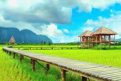 Cabaña en el medio del campo del arroz Fotos de archivo libres de regalías