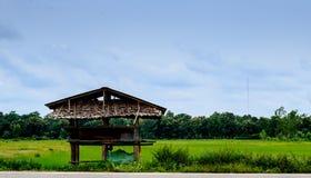 Cabaña en granja del arroz Imágenes de archivo libres de regalías