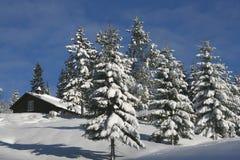 Cabaña en invierno Imágenes de archivo libres de regalías