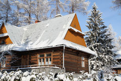 Cabaña en la estación nevosa del invierno Fotografía de archivo