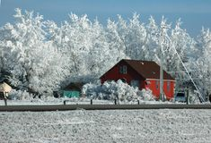 Cabaña roja en la carretera en invierno Fotografía de archivo libre de regalías