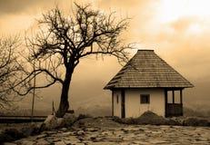 Cabaña y árbol de la sepia imagen de archivo