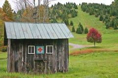 Cabaña y árbol rojo Fotografía de archivo