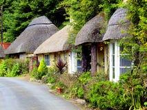 Cabañas cubiertas con paja, Devon del sur. Imagenes de archivo