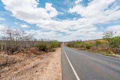 Cabaceiras, ParaÃba, Brazilië - Februari, 2018: Weg aan oneindig met Cactus in een Caatinga-Bioma stock foto
