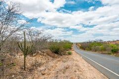 Cabaceiras, ParaÃba, Brazilië - Februari, 2018: Weg aan oneindig met Cactus in een Caatinga-Bioma royalty-vrije stock afbeeldingen