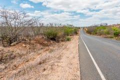 Cabaceiras, ParaÃba, Brazilië - Februari, 2018: Weg aan oneindig met Cactus in een Caatinga-Bioma royalty-vrije stock foto