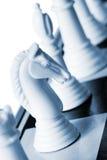 Caballero blanco Imagen de archivo libre de regalías