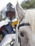 Caballero brillante en un caballo Foto de archivo libre de regalías
