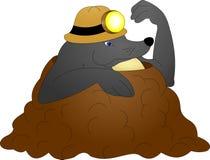 Caballero en terciopelo negro Foto de archivo libre de regalías