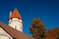 Caballeros de la ciudad medieval Fotos de archivo