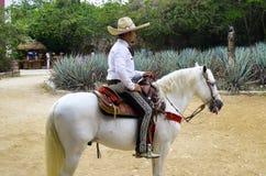 Caballeros messicano Fotografie Stock