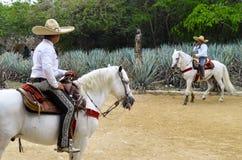 Caballeros mexicanos Fotos de archivo libres de regalías