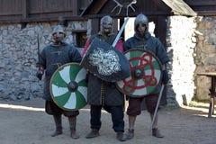 Caballeros Vikingos Imagen de archivo libre de regalías