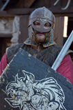Caballeros Vikingos Imagenes de archivo