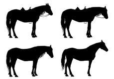Caballo ilustración del vector