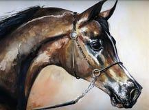 caballo Foto de archivo