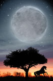 Caballo bajo la luna y puesta del sol stock de ilustración