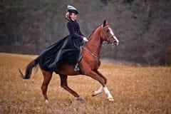 Caballo-caza con las señoras en hábito de montar a caballo foto de archivo libre de regalías