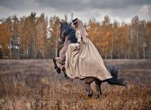 Caballo-caza con las señoras en hábito de montar a caballo Foto de archivo