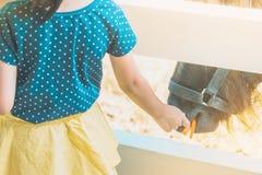 Caballo de alimentación de la niña en su granja a través de un pantano de madera blanco fotos de archivo