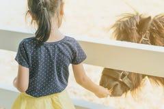 Caballo de alimentación de la niña en su granja a través de un pantano de madera blanco imagen de archivo libre de regalías