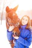 Caballo de bahía de alimentación del adolescente en campo del invierno Fotos de archivo libres de regalías