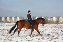 Caballo de bahía del montar a caballo de la muchacha del adolescente en invierno Fotografía de archivo libre de regalías