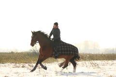 Caballo de bahía del montar a caballo de la muchacha del adolescente en invierno Fotografía de archivo