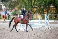 Caballo de bahía del montar a caballo de la chica joven en el salto de la demostración Fotografía de archivo