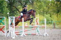 Caballo de bahía del montar a caballo de la chica joven en el salto de la demostración Fotografía de archivo libre de regalías