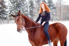 Caballo de bahía joven del montar a caballo del adolescente en parque del invierno Imagen de archivo