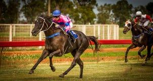 Caballo de carreras que gana y jinete de sexo femenino en Trangie NSW Australia Imagen de archivo libre de regalías